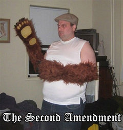 the-right-to-bear-arms.jpg